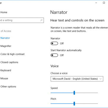 A screenshot of the Ease of Access settings window